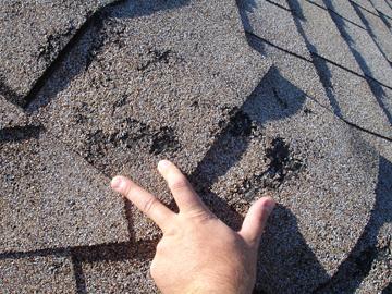 Image Result For Metal Roofing Denver